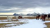 Six Senses достигнет Исландии