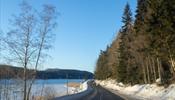 Дорогу Выборг - Брусничное на зиму закроют для автобусов