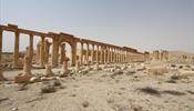 Колонну из Пальмиры воссоздали в Царском Селе