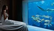 На Хайнане откроются подводные номера