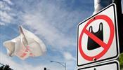 В Ленобласти откажутся от одноразового пластика