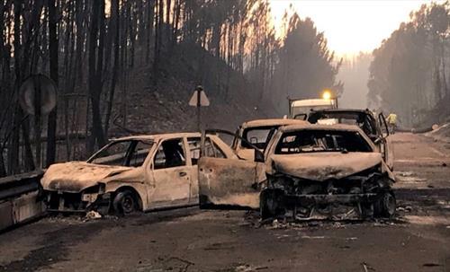 В Португалии выгорели целые районы