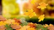 В октябре - падение