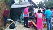 Туристов «Анекса» подрезал автомобиль