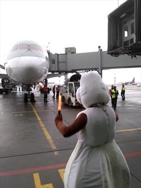 Полетели - Qatar Airways начала полеты в С-Петербург