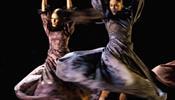 Фламенко продвигает Андалусию