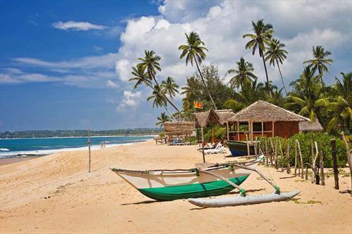 Спрос на Шри-Ланку может резко вырасти осенью