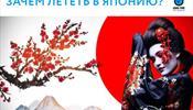 Япония – круглогодичная опора турагента