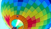 Солидная доля рынка может отойти к «ЭкспоФорум – Интернэшнл»