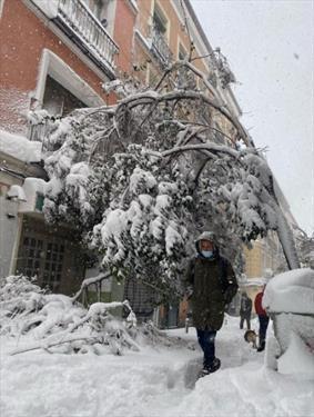 Снеготастрофа в Мадриде