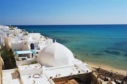 Тунис потерял половину британских туристов за одну ночь