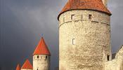 В Таллинне начнут целенаправленно готовиться к войне