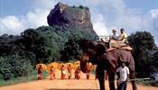 «Аэрофлот» «вспорет небо» на Шри-Ланку