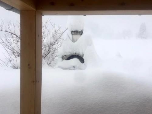Австрийский курорт Хохкар эвакуировал тысячи людей из-за сильных снегопадов