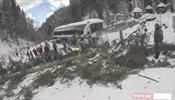 На Красной Поляне на сноубордистку упала 20-метровая пихта