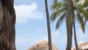 Отели на Карибах грозят бойкотом Booking'у